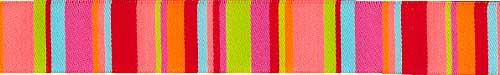 Lime & Coral Roman Stripes Ribbon (narrow)