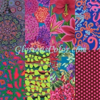 Aster One Yard Assortment