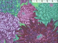 Purple Japanese Chrysanthemum