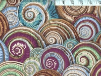 Antique Spiral Shells