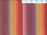 Exotic Warm Woven Stripes