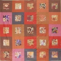 New Earthy Frames Quilt Fabric Pack